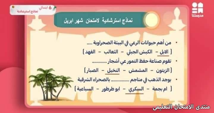 exam-eg.com_1619280696336116.jpg