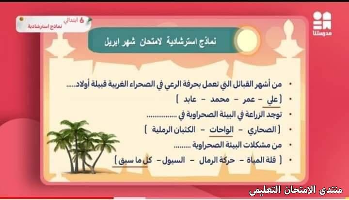 exam-eg.com_1619280696357517.jpg