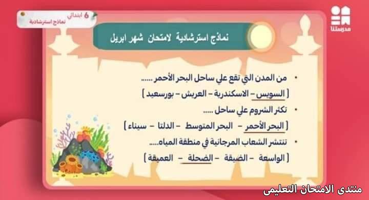 exam-eg.com_1619280696379418.jpg