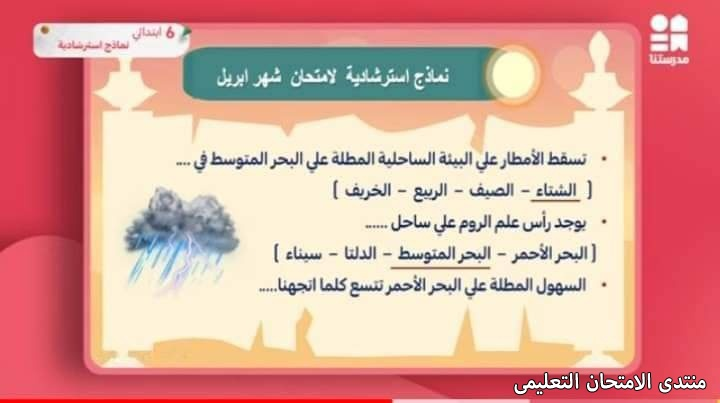 exam-eg.com_1619280696399819.jpg