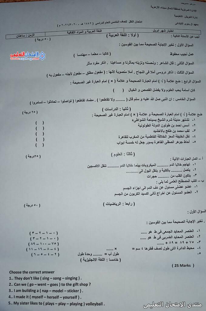 exam-eg.com_161937042659641.jpg