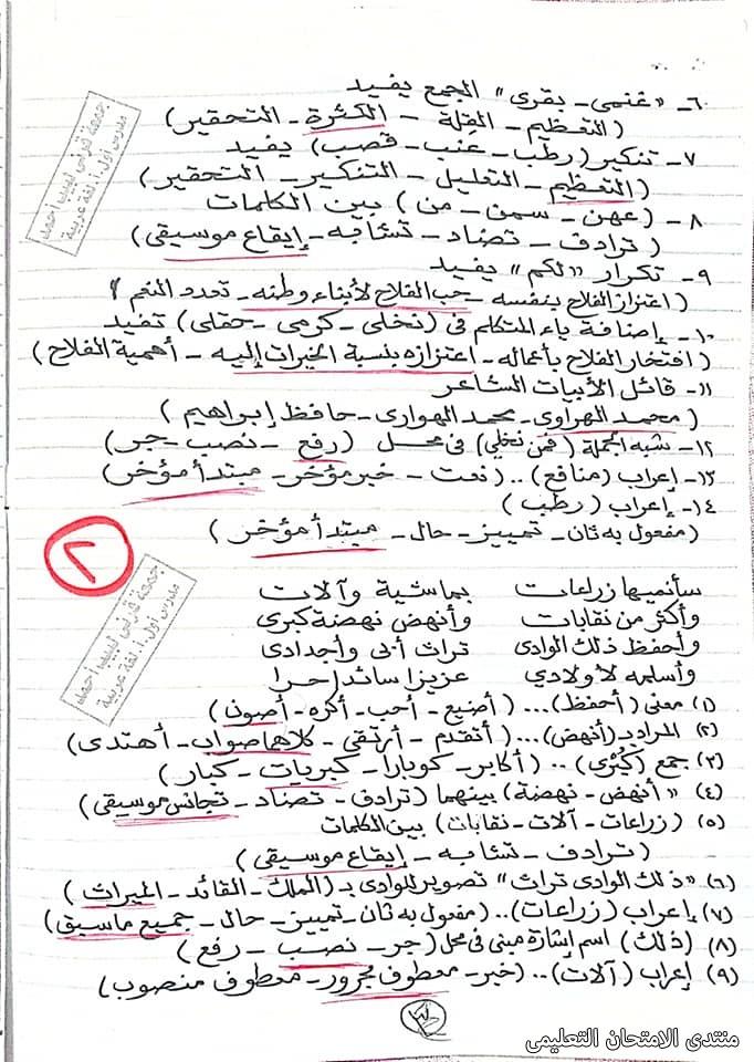 exam-eg.com_161940543601222.jpg