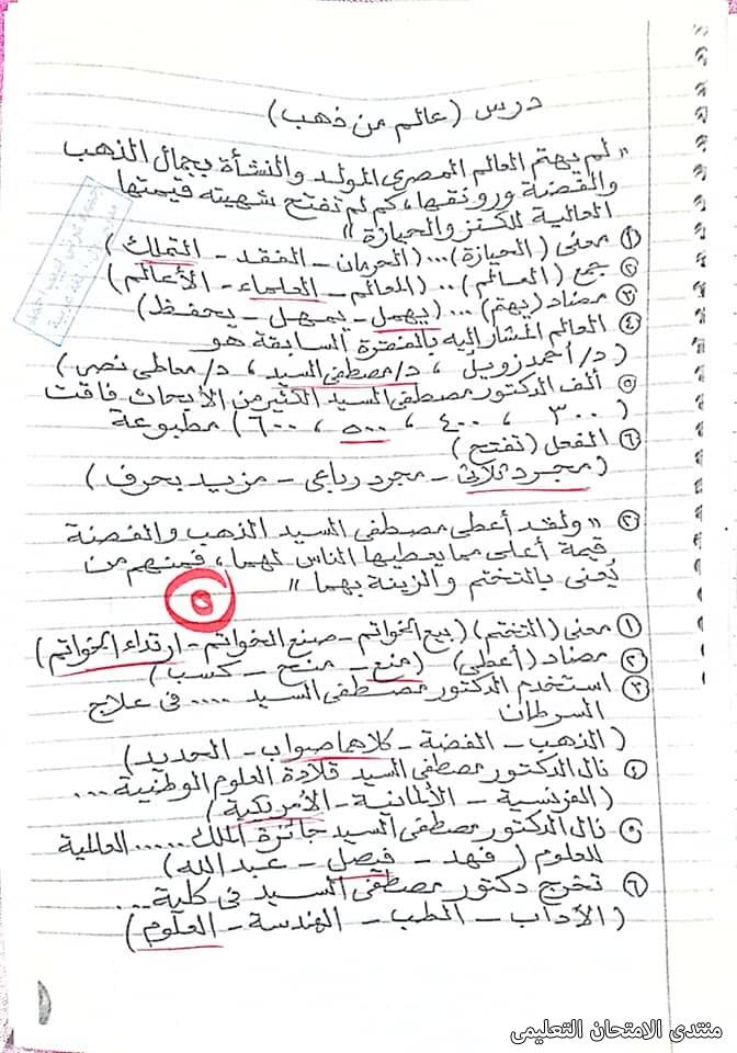 exam-eg.com_161940543611054.jpg