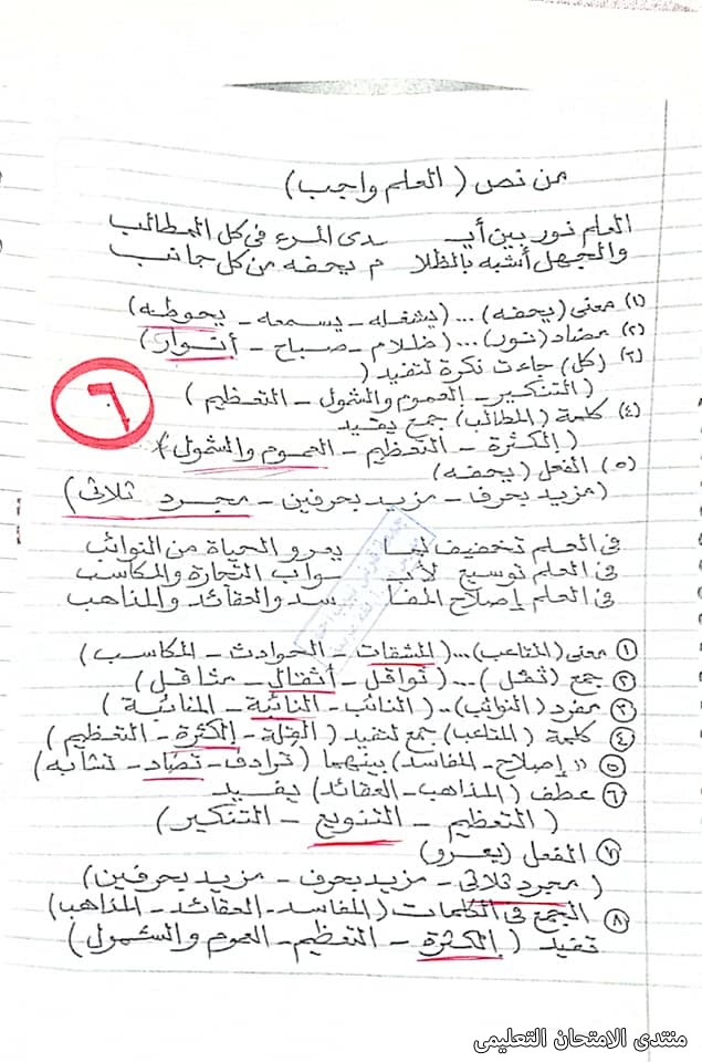 exam-eg.com_161940543634465.jpg