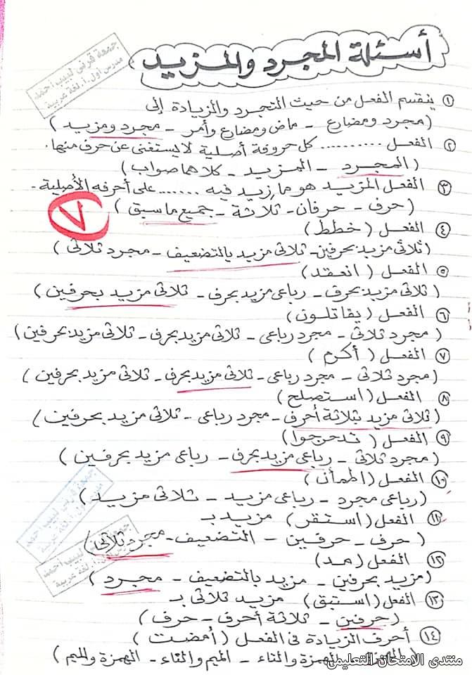 exam-eg.com_161940543638936.jpg