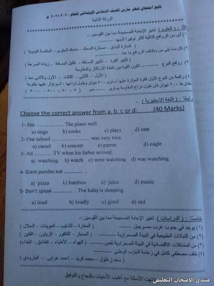 exam-eg.com_161949005446491.jpg