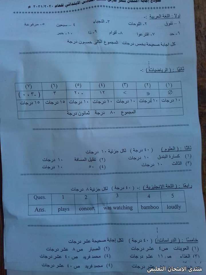 exam-eg.com_161949005458533.jpg