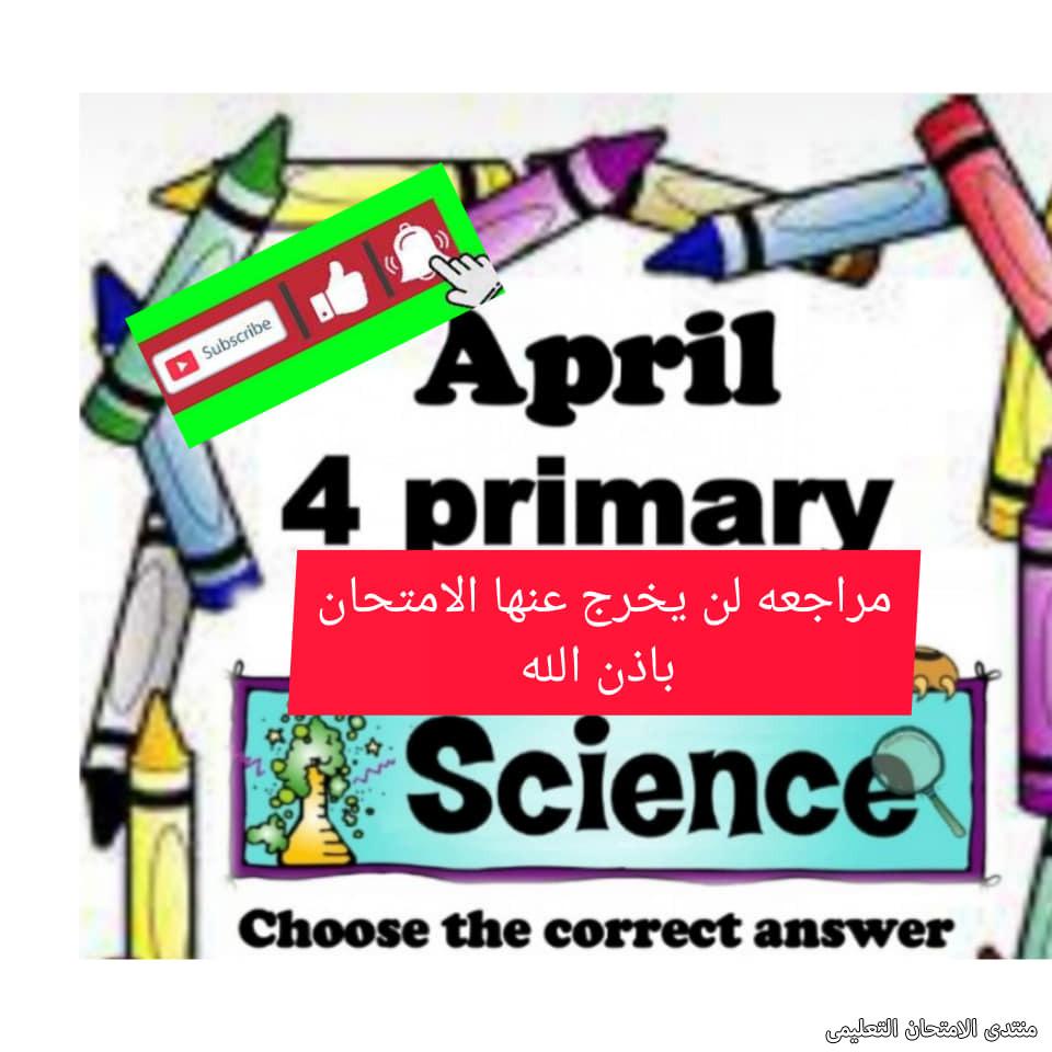 exam-eg.com_161953690170941.jpg