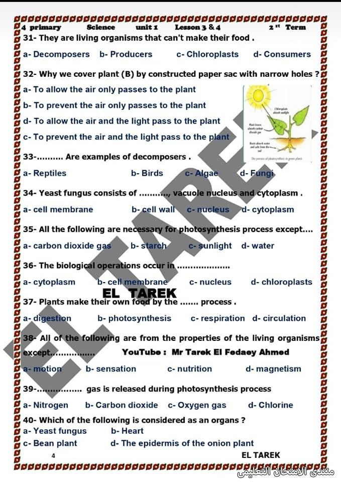 exam-eg.com_161953690189975.jpg