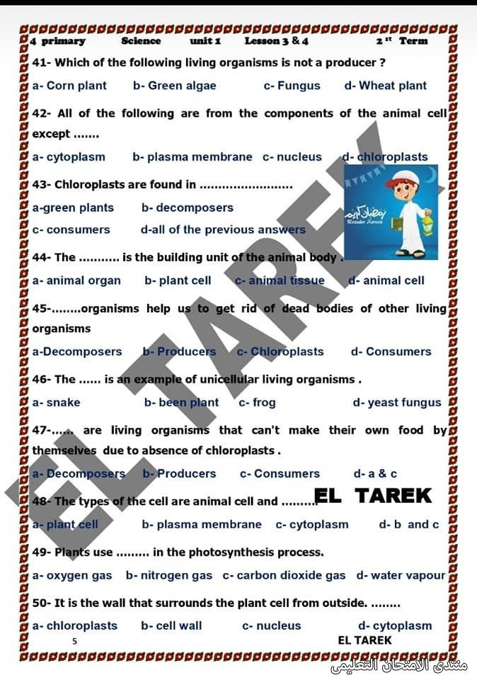 exam-eg.com_161953690193886.jpg