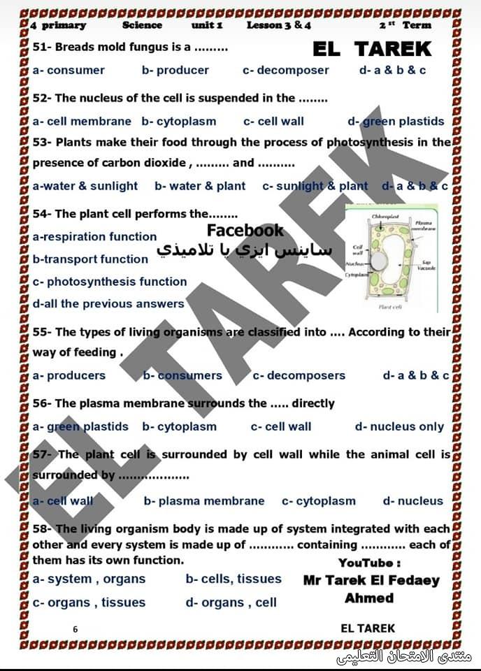 exam-eg.com_161953690197727.jpg
