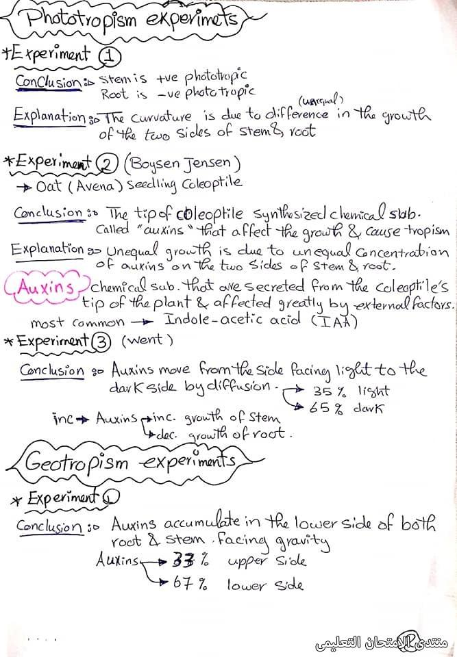 exam-eg.com_1619540097136111.jpg