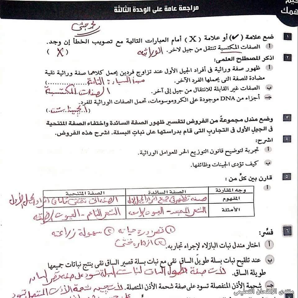 exam-eg.com_162115388249139.jpg