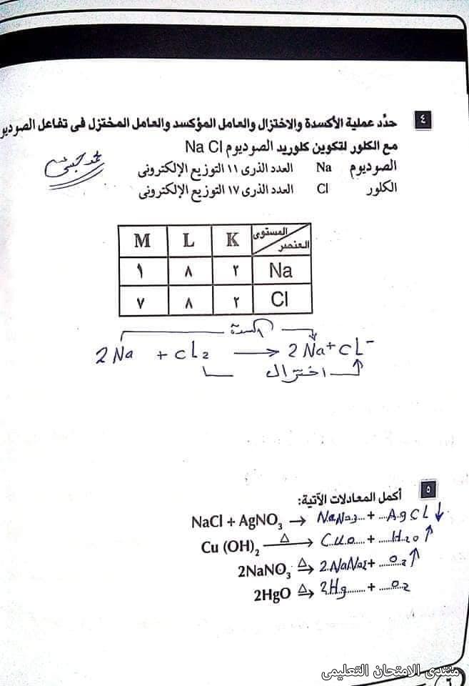 exam-eg.com_1621153882614913.jpg