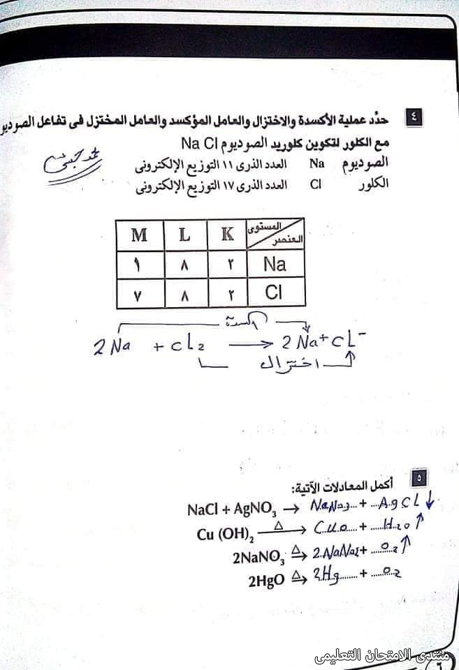 exam-eg.com_1621153882642214.jpg