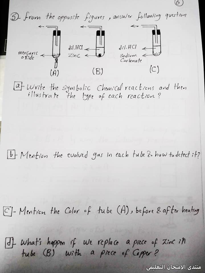 exam-eg.com_162115411672397.jpg