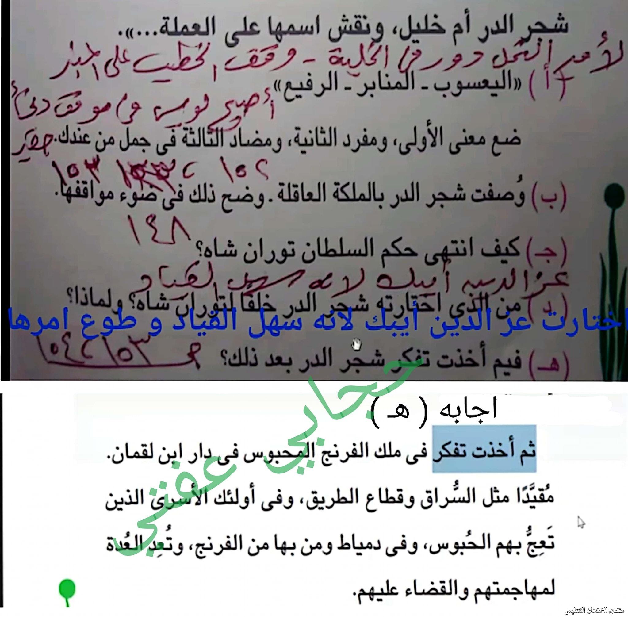 exam-eg.com_162209537220424.jpg