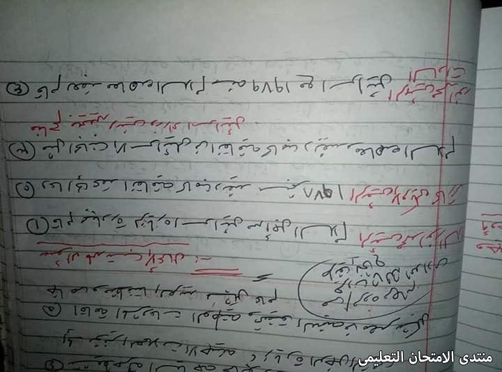 exam-eg.com_162235624841793.jpg