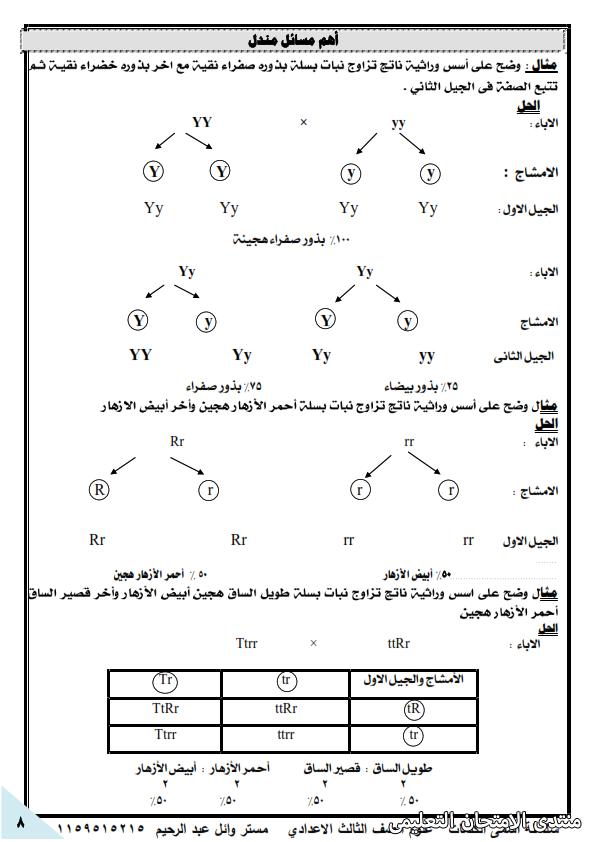exam-eg.com_162249924040818.png