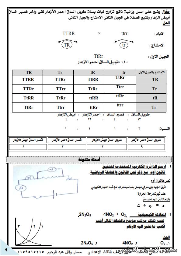 exam-eg.com_162249924044899.png