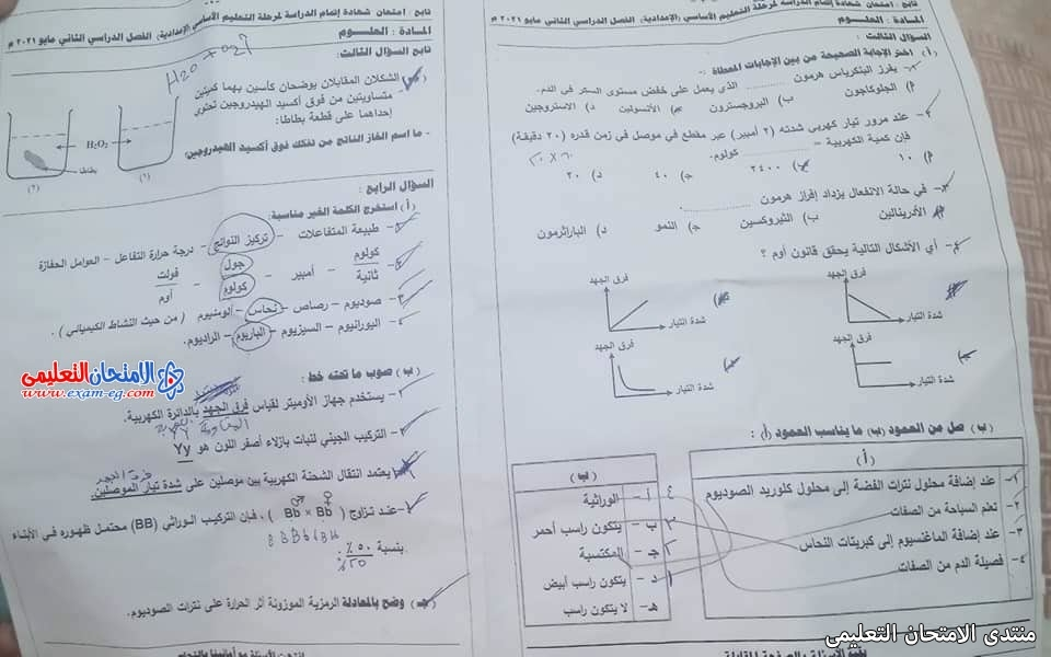 exam-eg.com_162263236103078.jpg