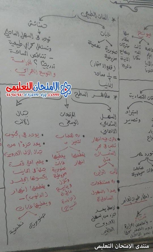 exam-eg.com_162267097751263.jpg