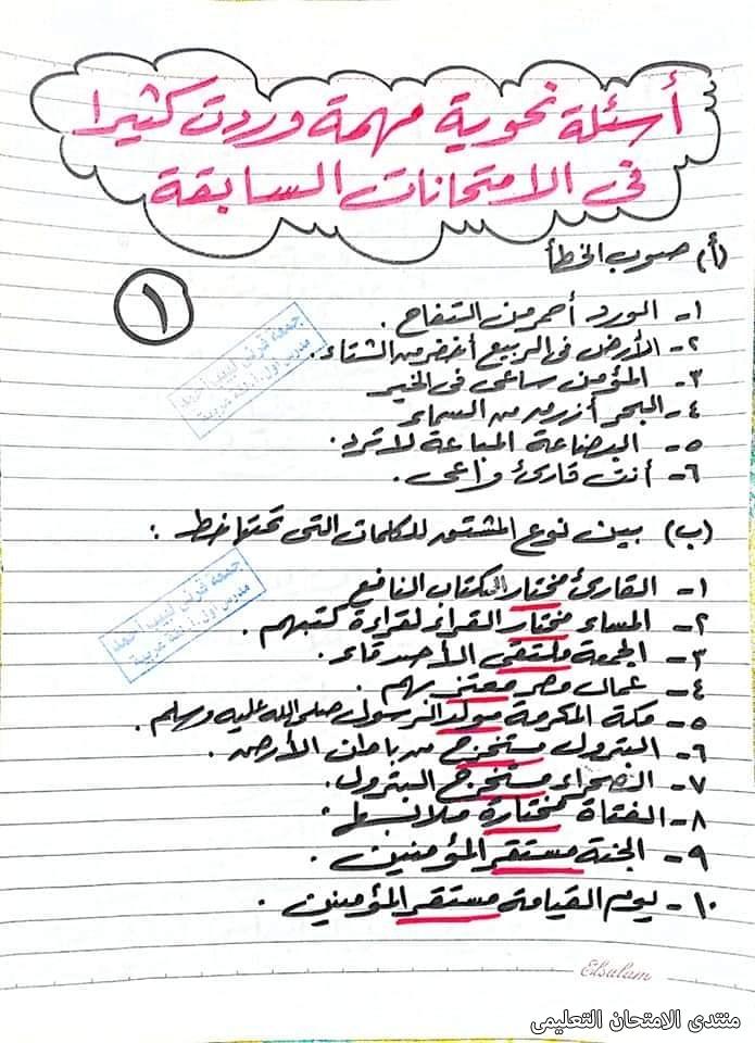 exam-eg.com_162280755623534.jpg
