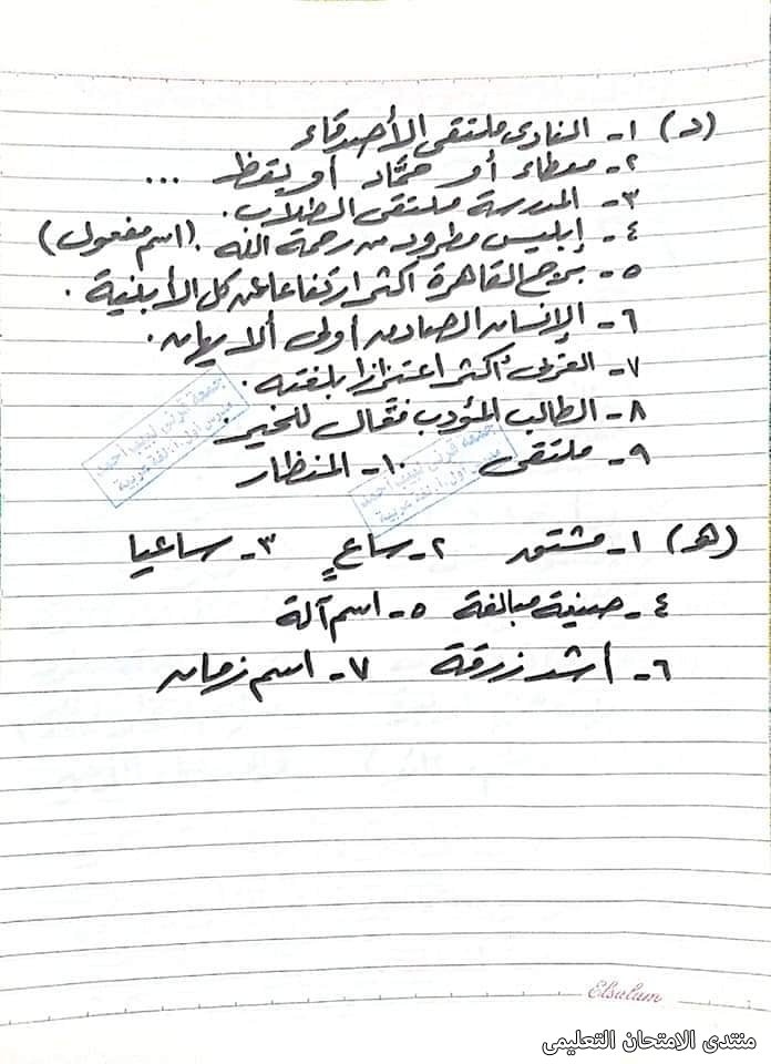 exam-eg.com_162280755638918.jpg