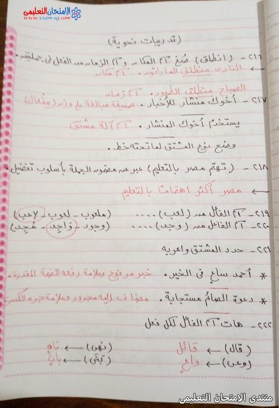 exam-eg.com_1622816816927819.jpg