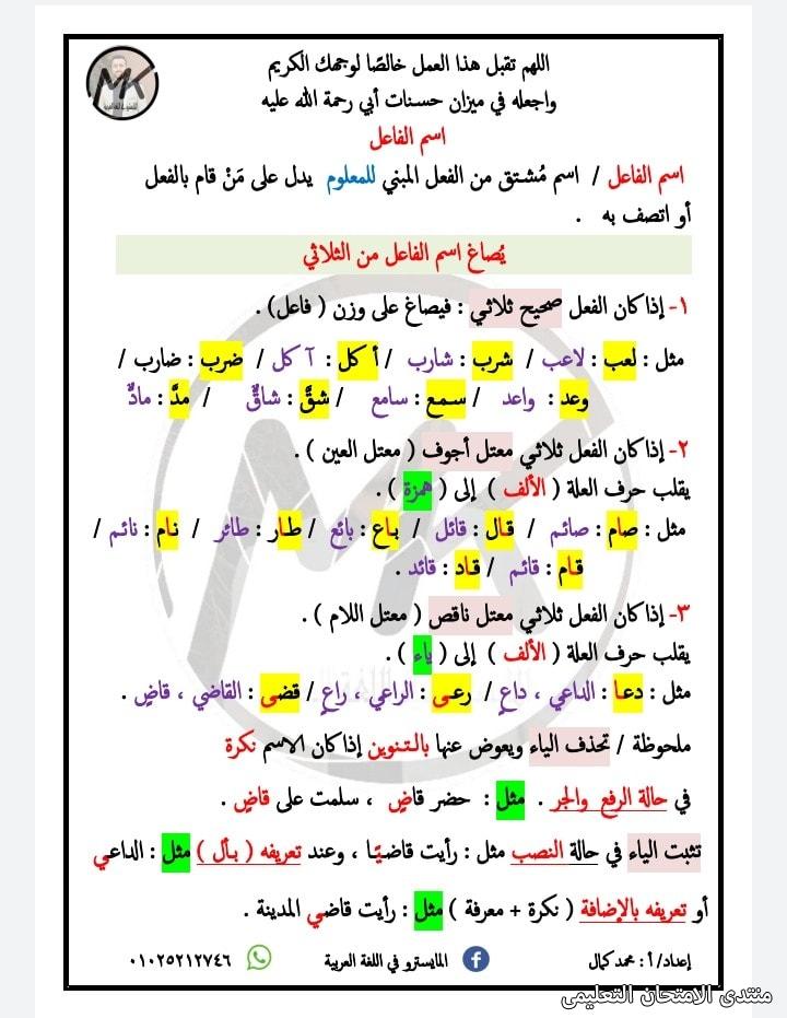 exam-eg.com_162288316866131.jpg