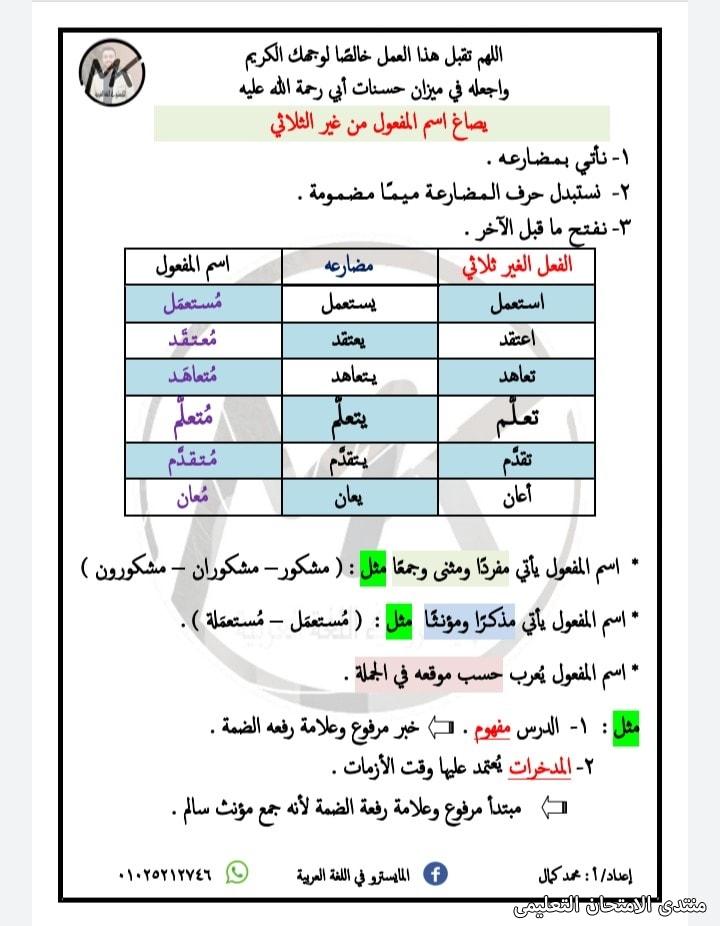 exam-eg.com_162288316876334.jpg
