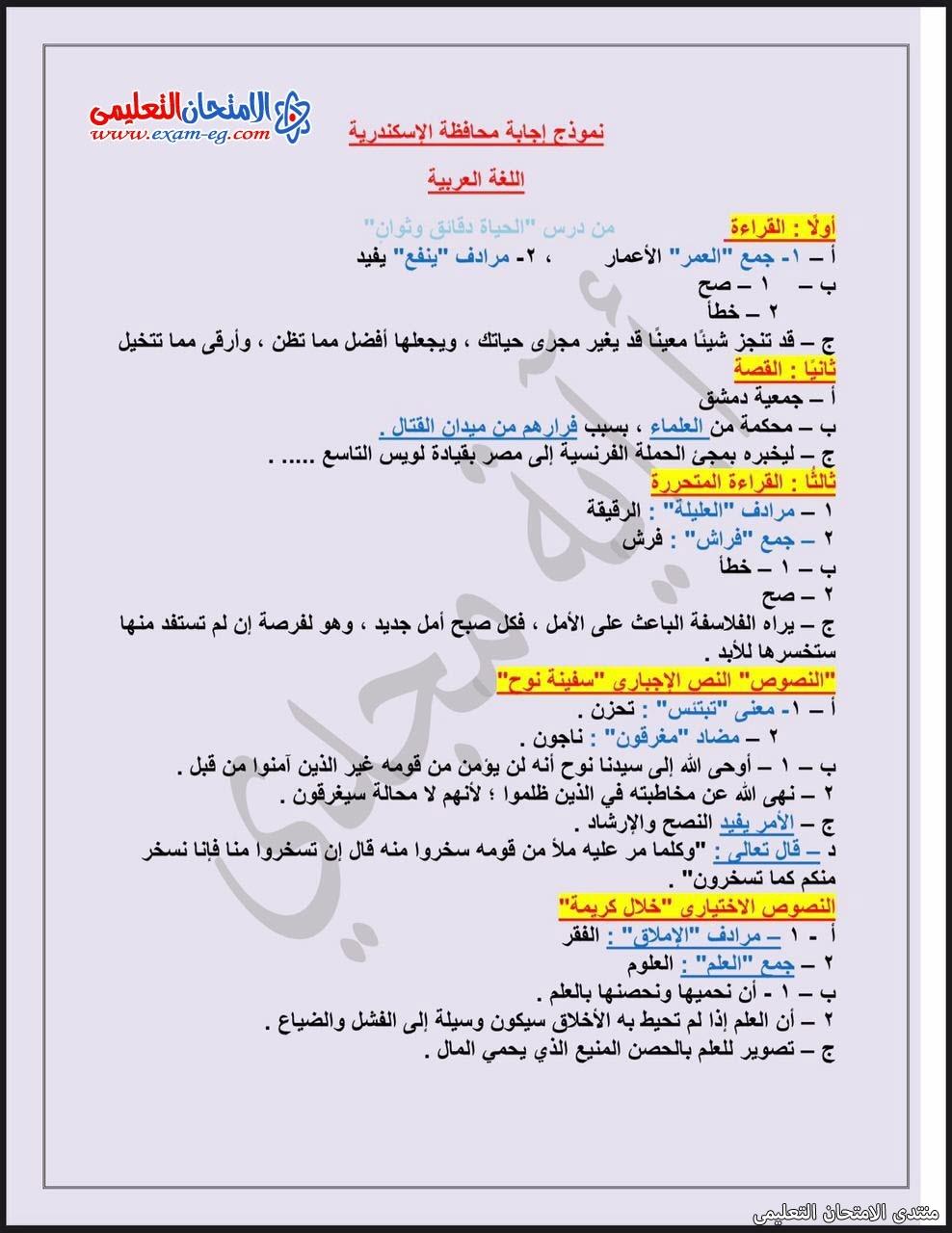 exam-eg.com_162288844741243.jpg