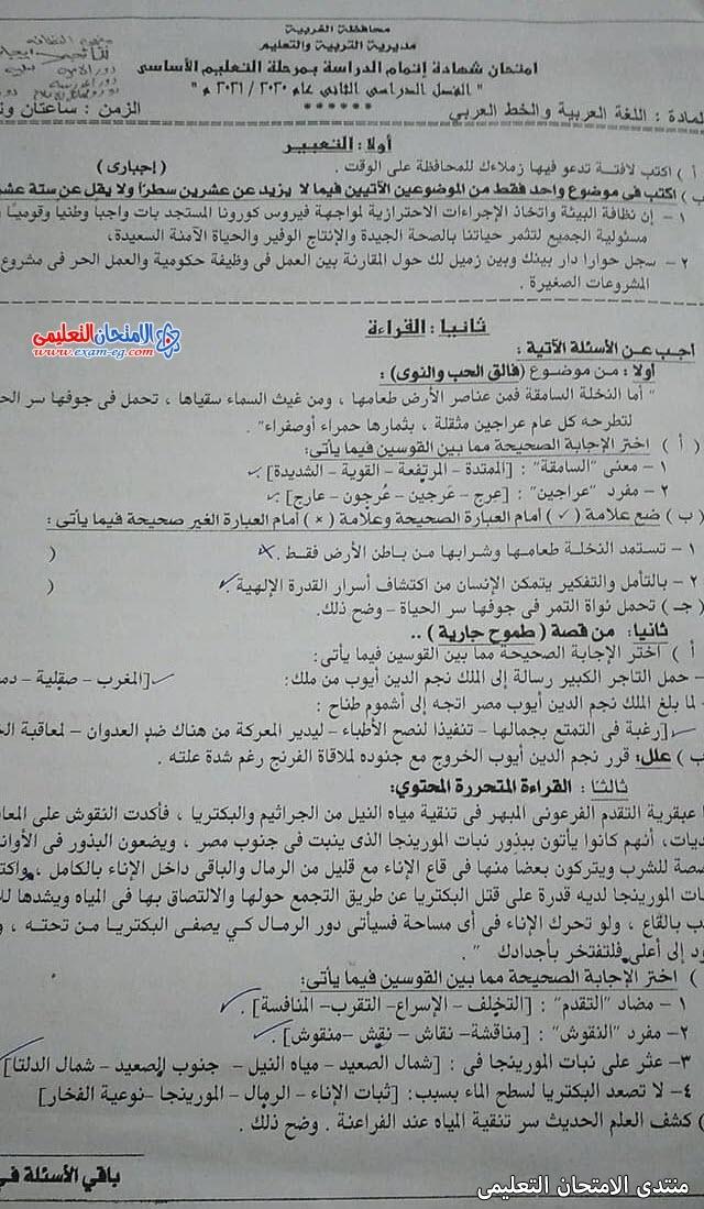 exam-eg.com_162289001916181.jpg