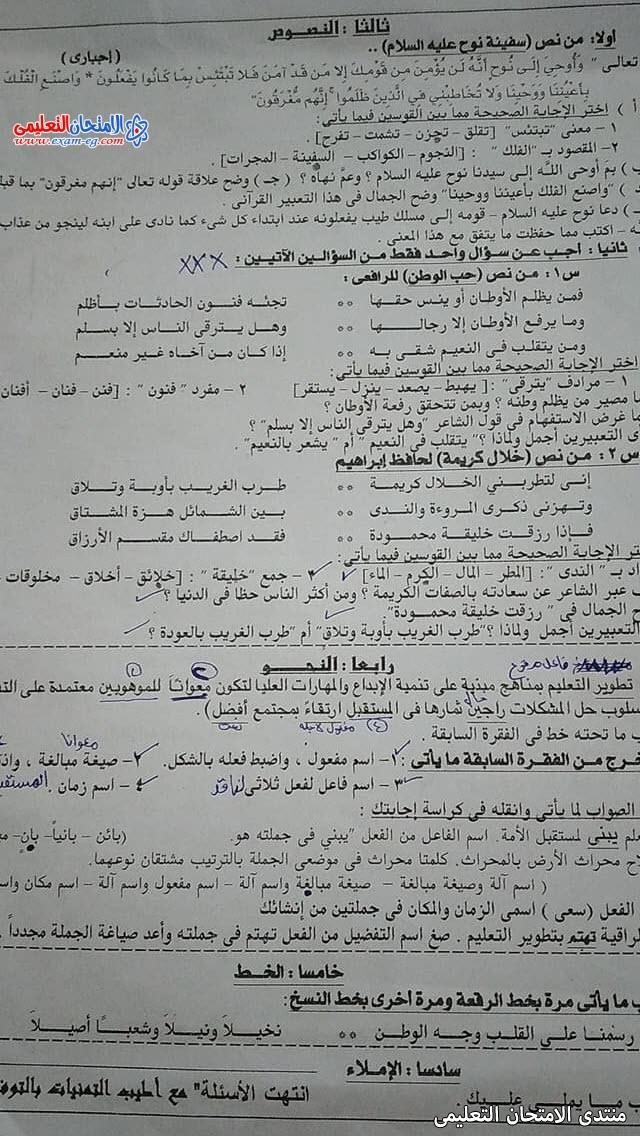exam-eg.com_162289001919212.jpg