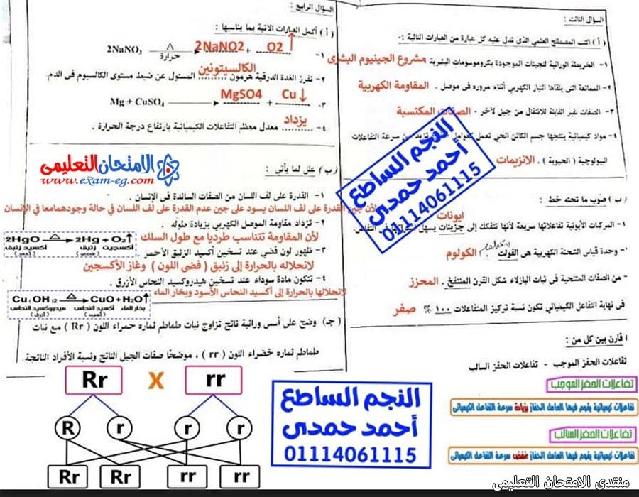 exam-eg.com_162301385792097.jpg