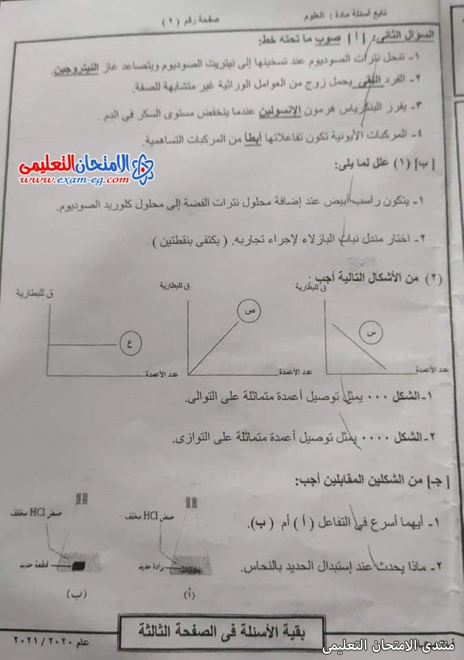 exam-eg.com_1623013858087514.jpg