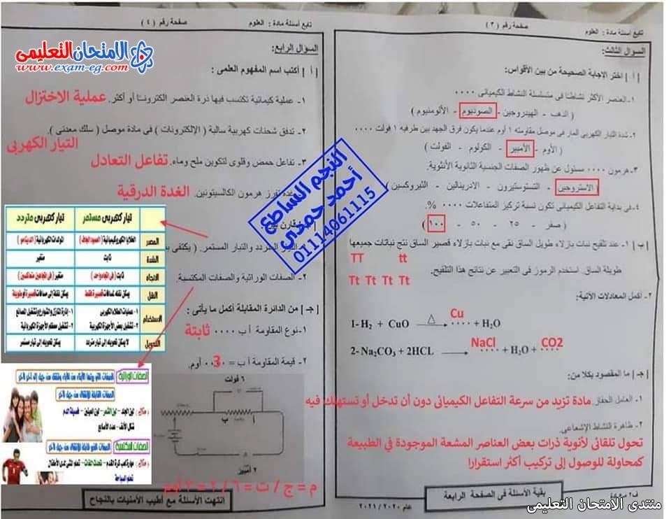 exam-eg.com_1623013858210419.jpg