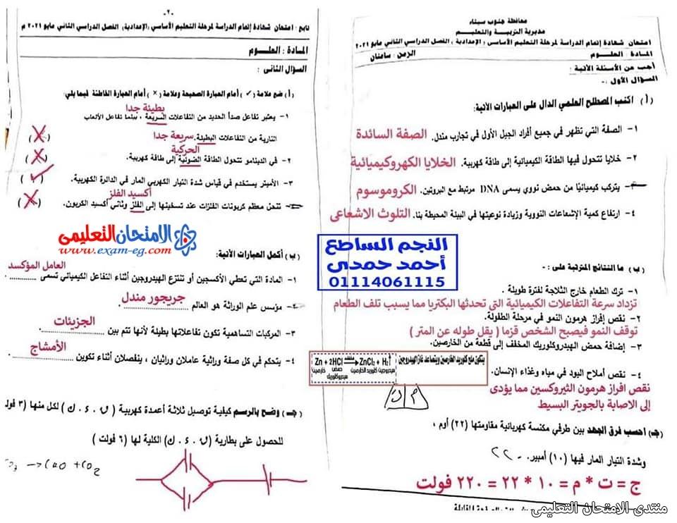 exam-eg.com_162301424485344.jpg