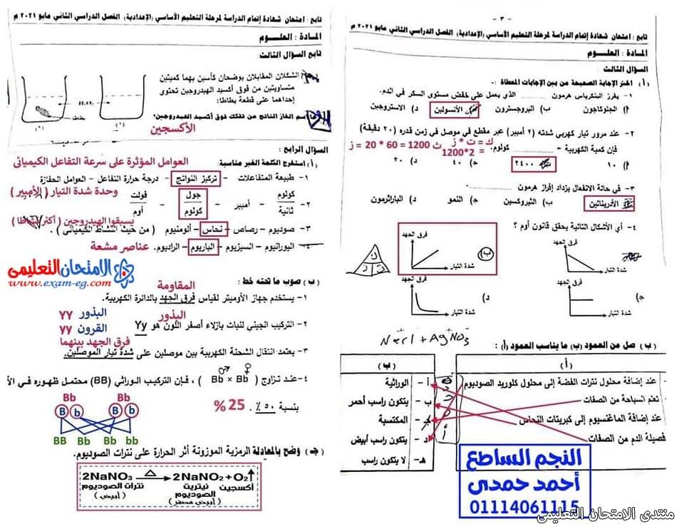 exam-eg.com_162301424488135.jpg