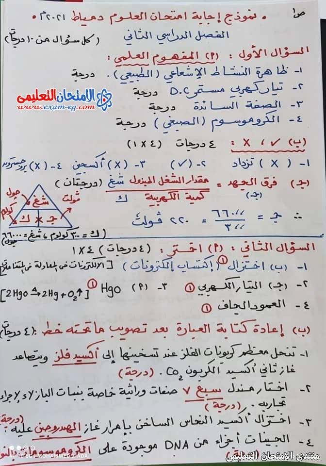 exam-eg.com_162301424491016.jpg