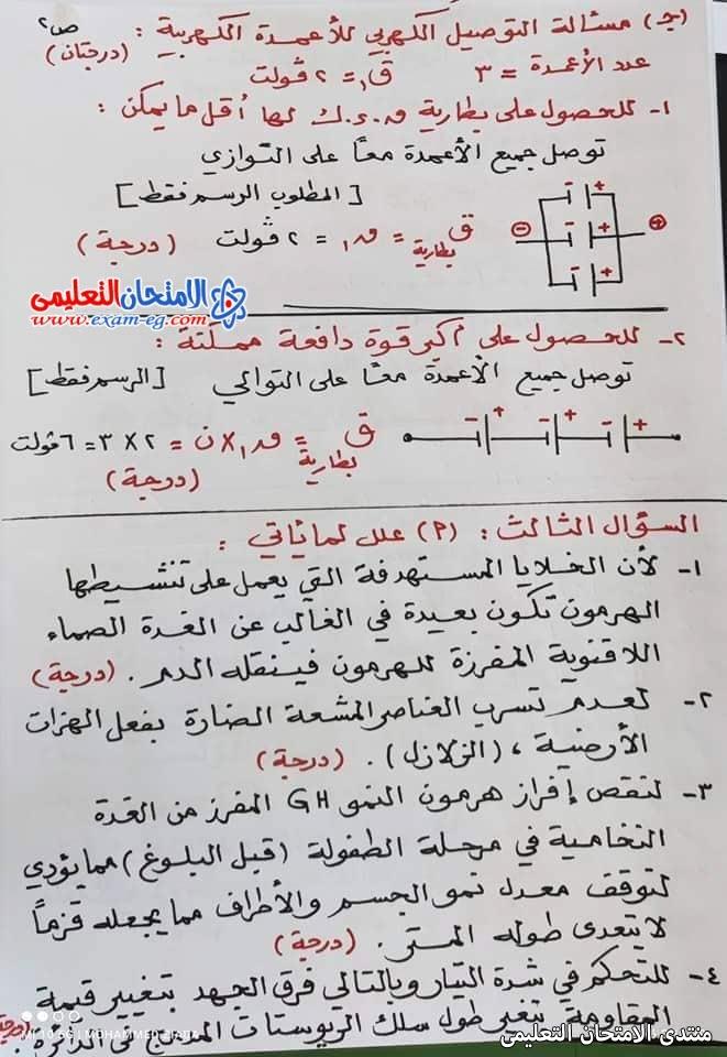 exam-eg.com_162301424493597.jpg