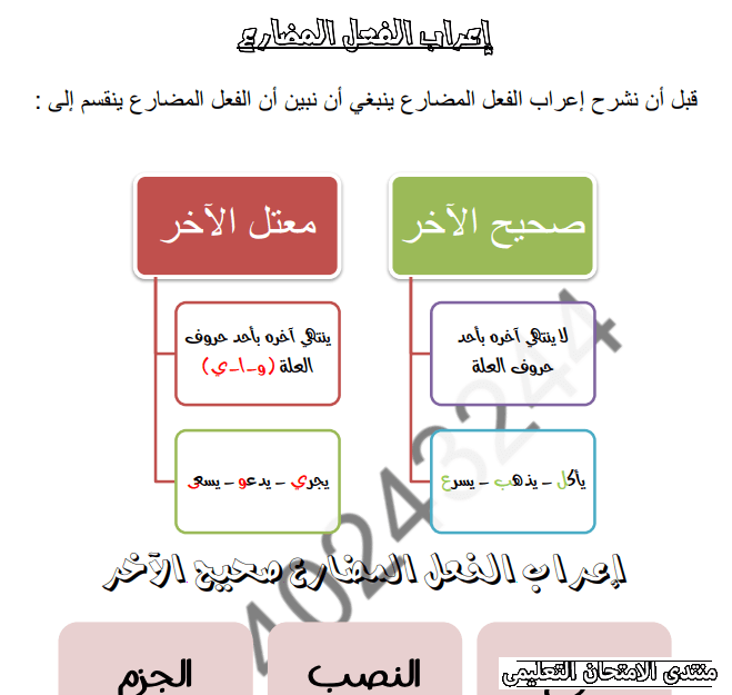 exam-eg.com_162307489629521.png
