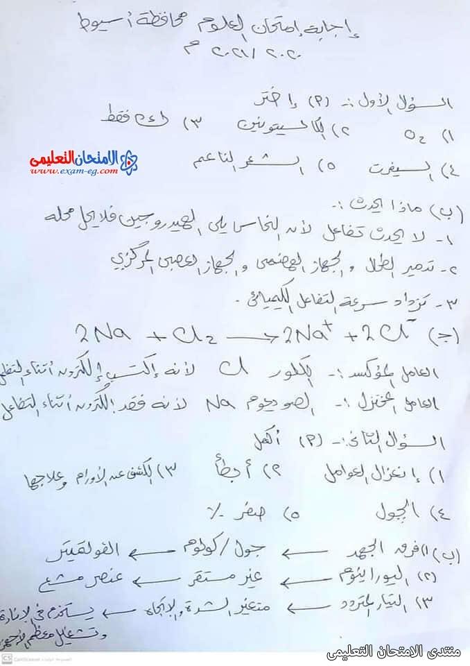 exam-eg.com_162308349306913.jpg