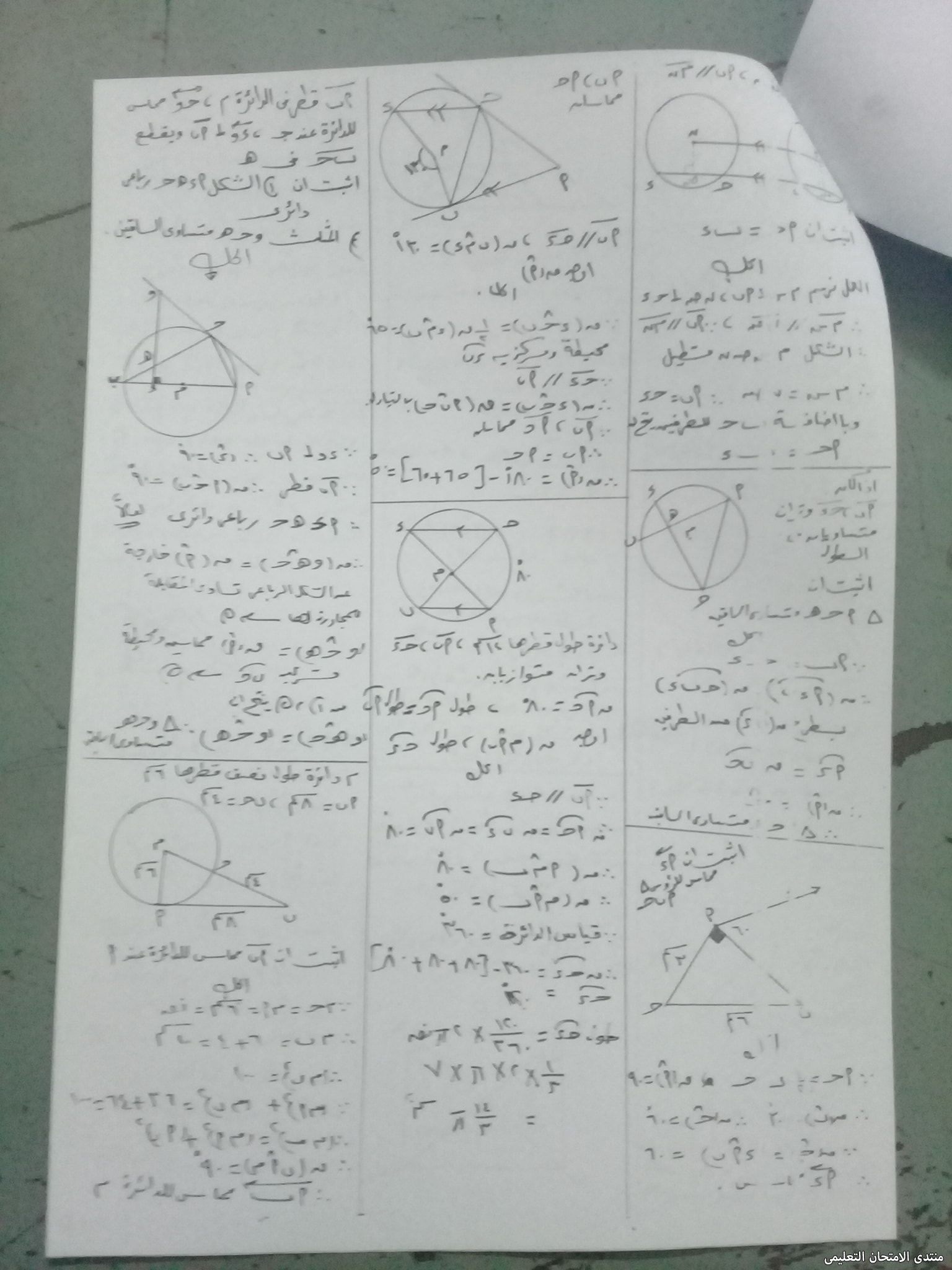 exam-eg.com_162308690240371.jpg