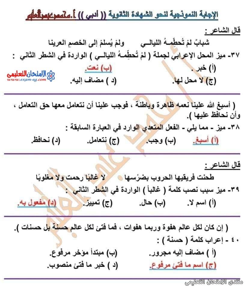 exam-eg.com_162601593633931.jpg