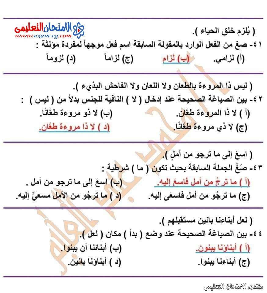 exam-eg.com_162601593637492.jpg