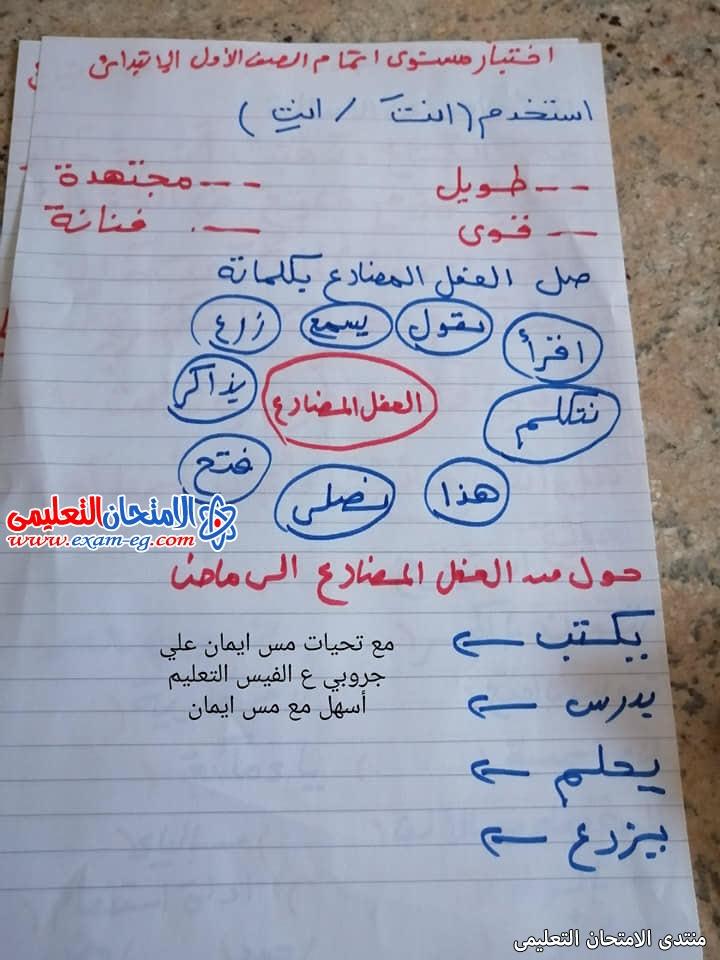 exam-eg.com_16260217223755.jpg