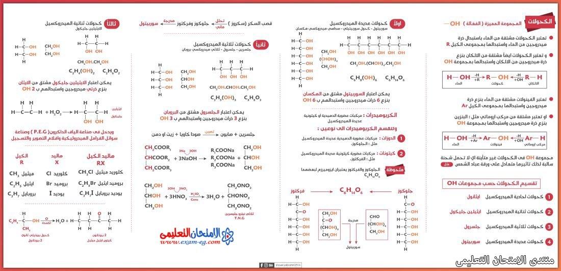 exam-eg.com_16263583714531.jpg