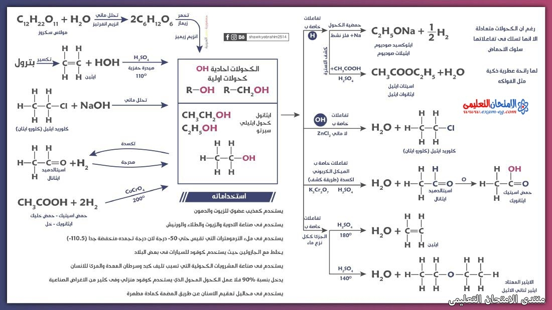 exam-eg.com_162635837150253.jpg