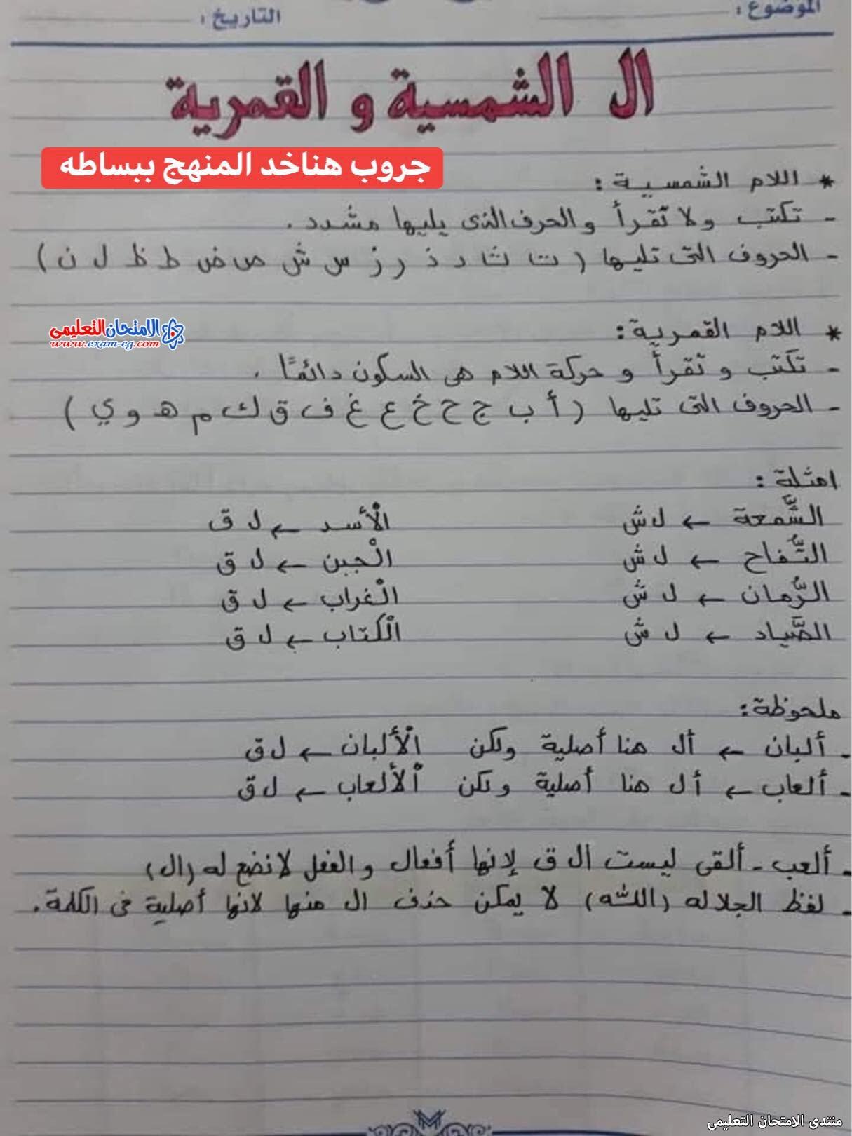 exam-eg.com_163026431134922.jpg